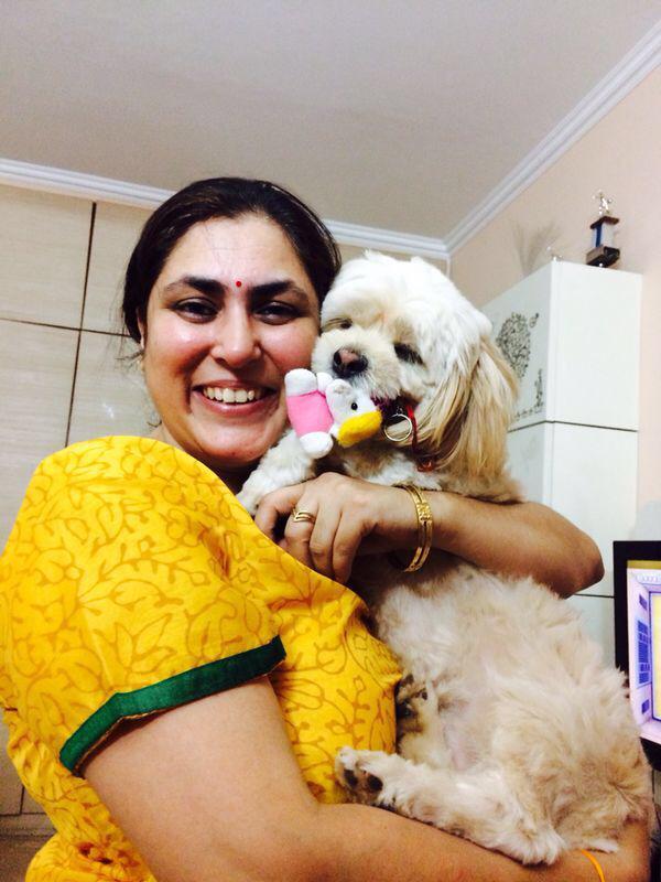 Cavachon puppies for sale in delhi