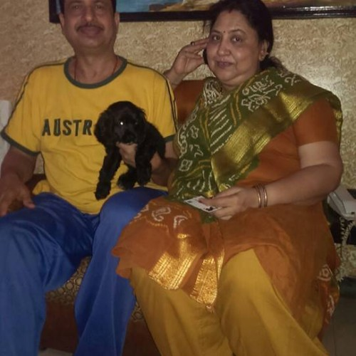 cocker spaniel puppies for sale in mumbai
