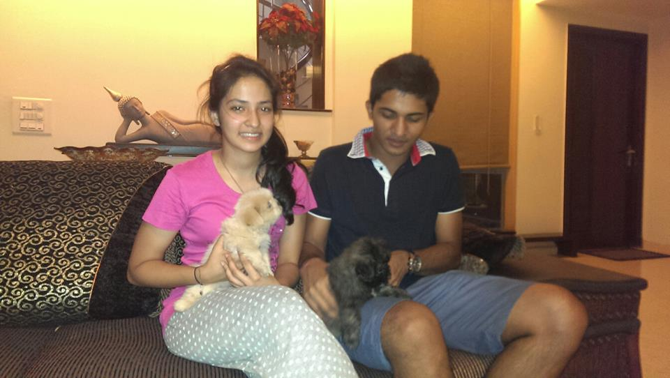 toy havanese puppies for sale in ncr